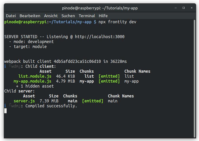 Frontity Anleitung Server im Development Mode gestartet